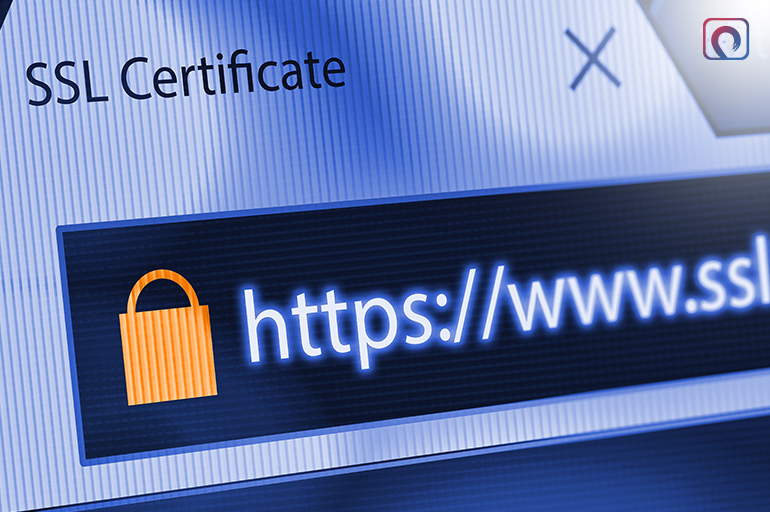 Secures your browsing experience with HTTPS